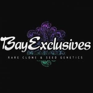 Bay Exclusives