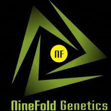Nine Fold Genetics