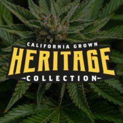 DNA Heritage