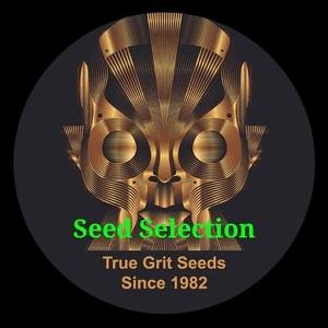 True Grit Seeds